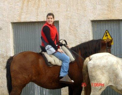 20061126193113-caballosmini.jpg