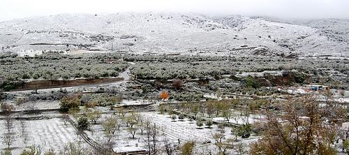 Abla nieve